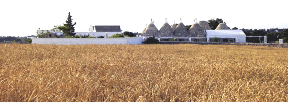 6 good reasons to spend your holidays in an old masseria (manor farm) in Puglia, today a luxury resort